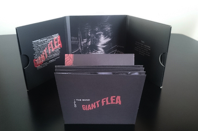 aldo-the-band-giant-flea-4